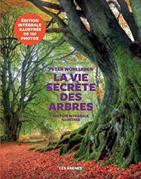 la vie secrete des arbres couverture de livre